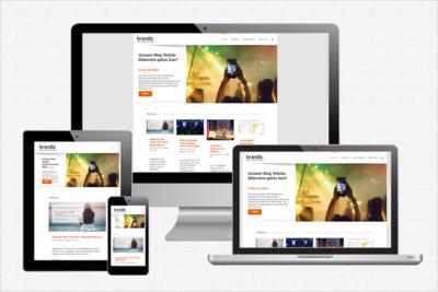 brandiz-webseite-blog-zillymedia